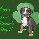 Happy Saint Patty&#x27;s Day! by Ginny York