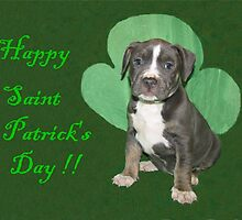 Happy Saint Patty's Day! by Ginny York