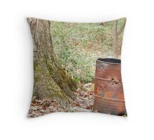Colors of Winter 1 Throw Pillow