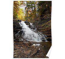 F. L. Ricketts Falls (Autumn) Poster