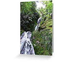 Fjordland mountain cascade Greeting Card