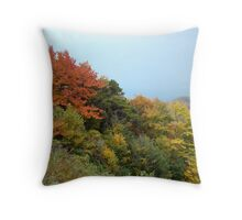 Fall colors on the Blue Ridge Parkway Throw Pillow