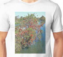Redcliffe Callistemon Unisex T-Shirt