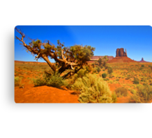 The Painted Valley Metal Print