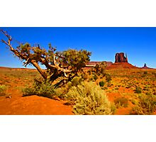 The Painted Valley Photographic Print