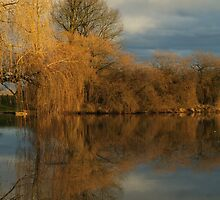 Reflections of Fall by Annie Lemay  Photography