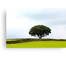 Hill topper Canvas Print