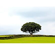 Hill topper Photographic Print