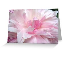 Pretty In Pink, Third In Series Greeting Card
