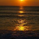 Sunrise at Mirlo Beach, Cape Hatteras, North Carolina. by Larry Llewellyn