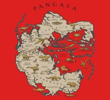 map of the supercontinent Pangaea One Piece - Long Sleeve