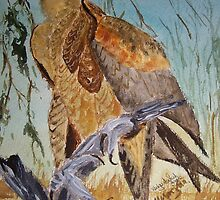 Wedge Tailed Eagle - bird of prey - Australia by Margaret Morgan (Watkins)