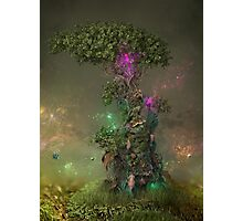 Polonium Tree Photographic Print