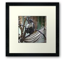 I'm not looking Framed Print