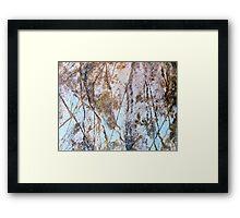 Rock Etchings Framed Print