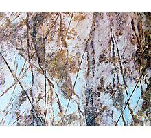 Rock Etchings Photographic Print