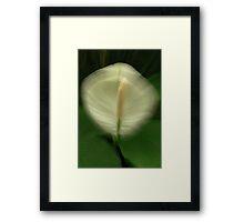 Earthly Fecundity Framed Print