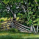 """""""By The Rail Fence"""" by Frank Boudreau"""