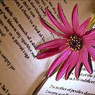 A Bookmark For Sylvia by paintingsheep