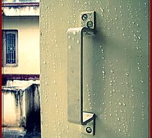 After the Rains by Vandana Indramohan
