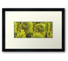 Mum's The Word: The Mum's Are Green Framed Print