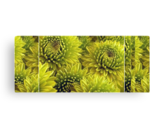 Mum's The Word: The Mum's Are Green Canvas Print