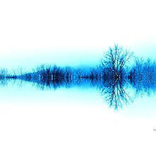 Solitude by Thomas Eggert