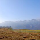 Rice fields and Lake Phewa by Breanna Stewart