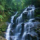 Sylvia Falls by Michael Matthews