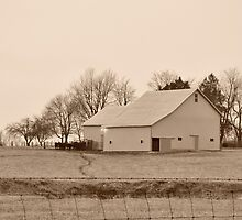 A sepia farm scene by mltrue