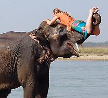 """""""Elephant Bath"""" by Breanna Stewart"""