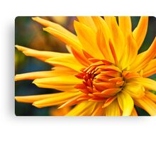 Golden Fingers Canvas Print