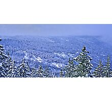 White Wonderland Photographic Print