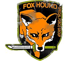 Foxhound Photographic Print