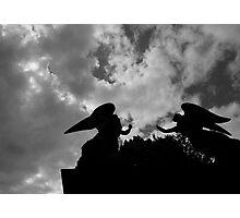 Il gioco degli angeli. Photographic Print
