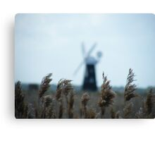 marsh grass in the wind Canvas Print