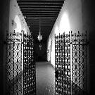 The gate is open by csouzas