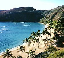 View of Beach, Hawai`i by EJ27