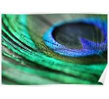 Peacock Feather - Abstract Macro Photograph Poster