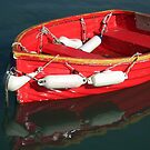 Red Rowboat by lynn carter
