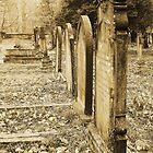 Victorian Memories by Dave Godden