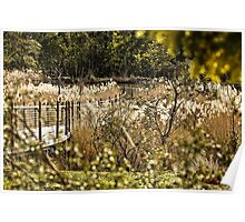 The Sanctuary (10) - Tidbinbilla Nature Reserve Poster