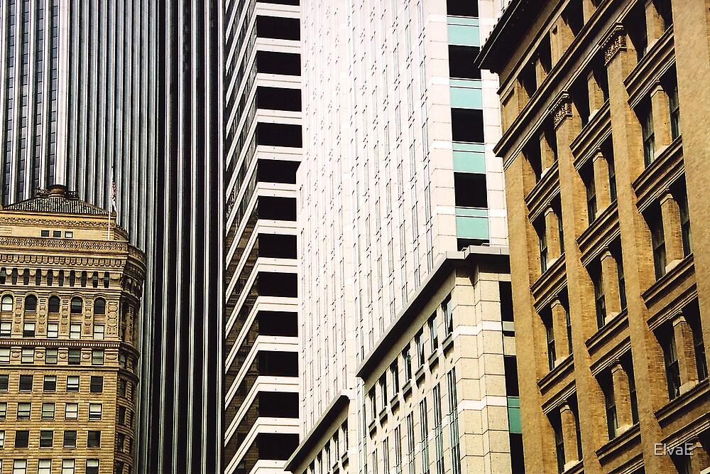 Buildings in San Francisco by ElvaE