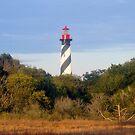 Saint Augustine Lighthouse by David Lee Thompson