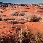 Desert Sands by Wanda Dumas