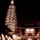 Changzhou Buddhist tower at night, China by Chris Millar