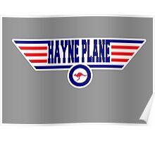 Hayne Plane Poster