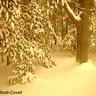 Sepia Snow by Deb  Badt-Covell