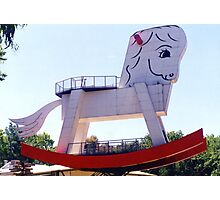 The Big Rocking Horse Photographic Print