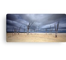 Lake Dumbleyung WA Canvas Print